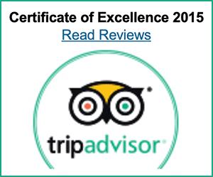 Trip Advisor 2015