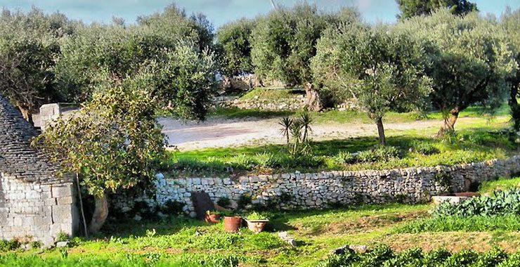 Puglia and Basilicata