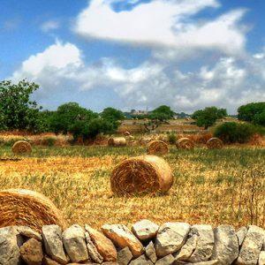 Eastern Sicily Walk